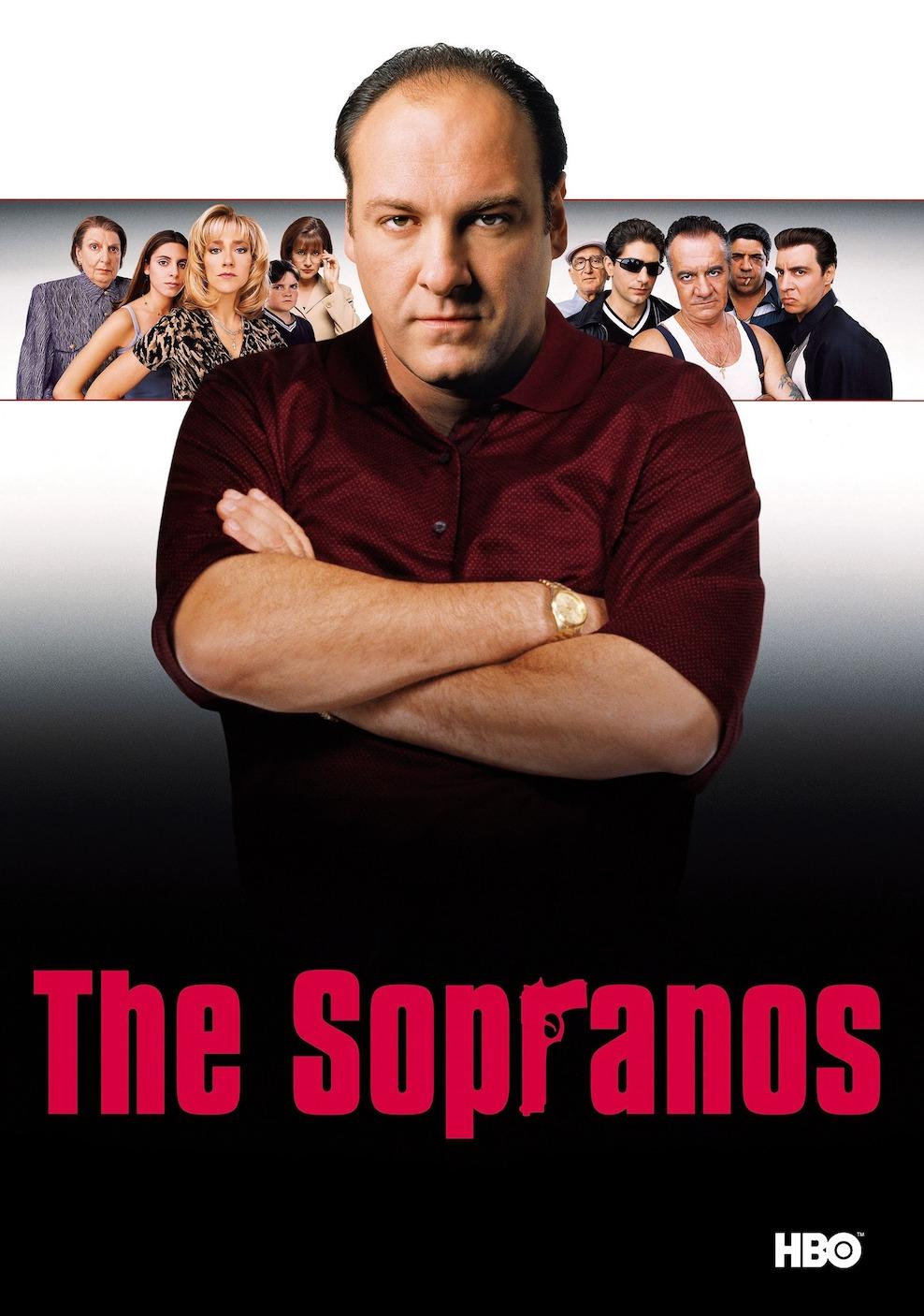 <p><strong>The Sopranos 10/9.2</strong></p><p>Dizi, büyük bir İtalyan-Amerikan mafya ailesi olan Soprano ailesi ve ihanete tahammülü olmayan mafya lideri Tony Soprano'nun hikayesini anlatıyor.</p>