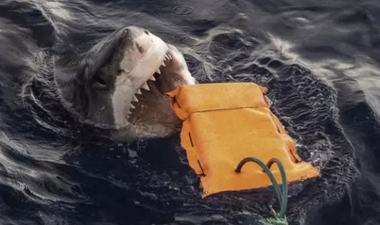 Bilim insanları köpekbalığı geçirmez dalış kıyafeti üretmeyi başardı!
