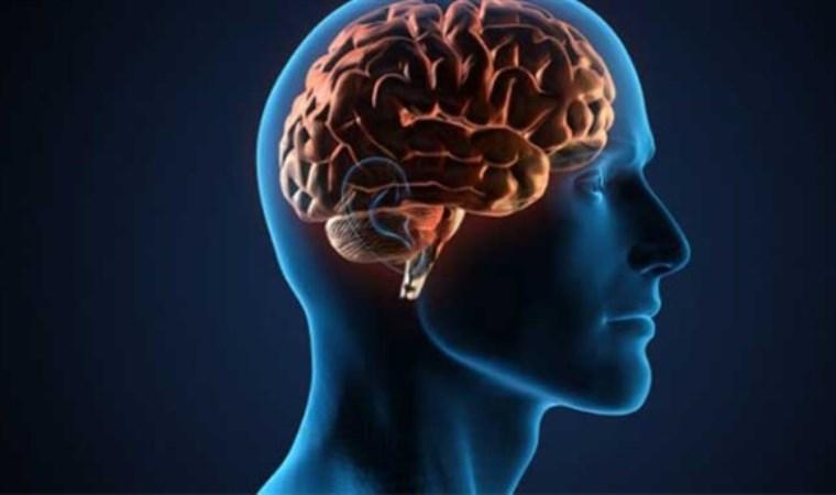 'Beynini doğru besle, mutlu ol'