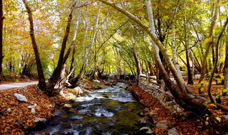 Antalya'da renklerin sonbahar dansı