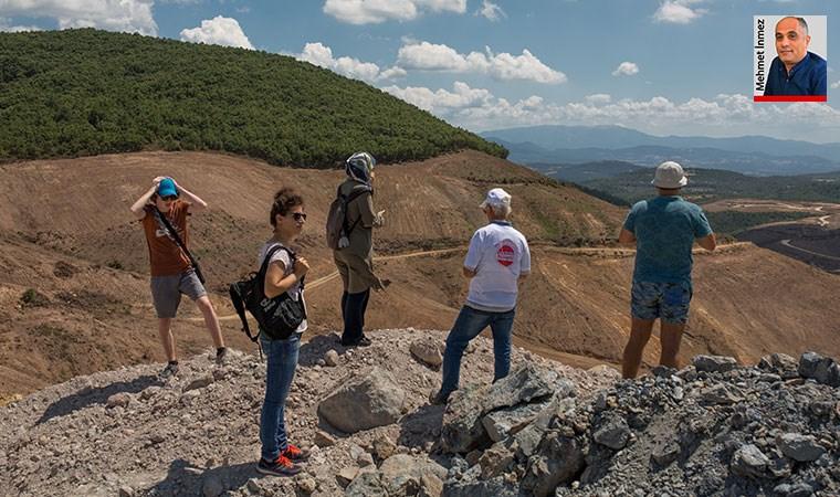 Kaz Dağları'nda maden kıyımının boyutu: 347 bin 815 ağacı katlettiler