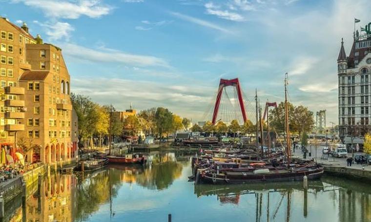 Rotterdam cazı sever