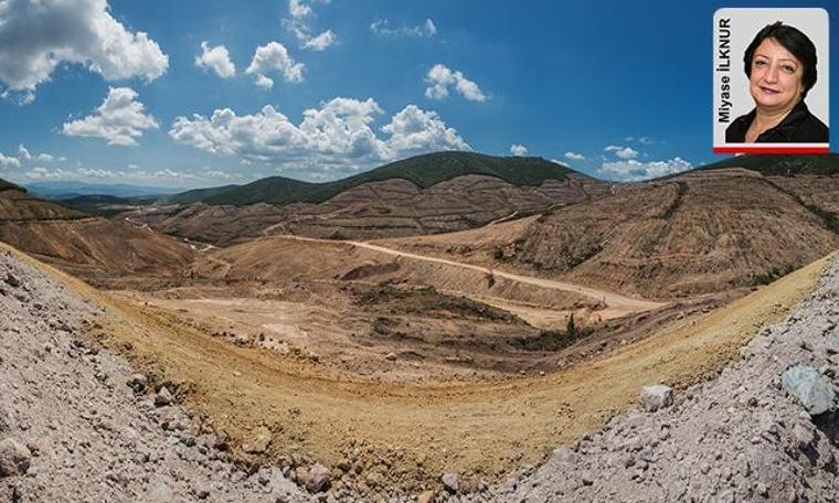 Kaz Dağları gerçeği: Bu vatana nasıl kıydınız?