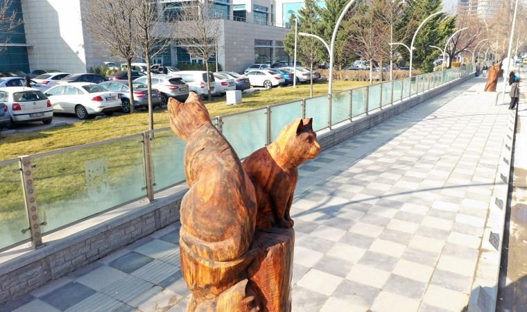 Ankara'da kuru ağaçlar sanat eserine dönüşüyor...