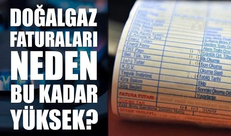 Türkiye üzerinden geçen doğalgazın fiyatı Avrupa'da 120 dolarken Türkiye'de neden 280 dolar?