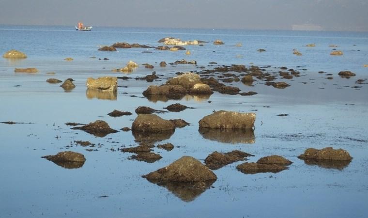 Antik limanın kalıntıları su yüzüne çıktı!