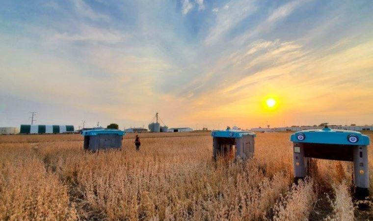Google'ın robotları tarladaki ürünü tek tek inceleyip çiftçiye bilgi verecek