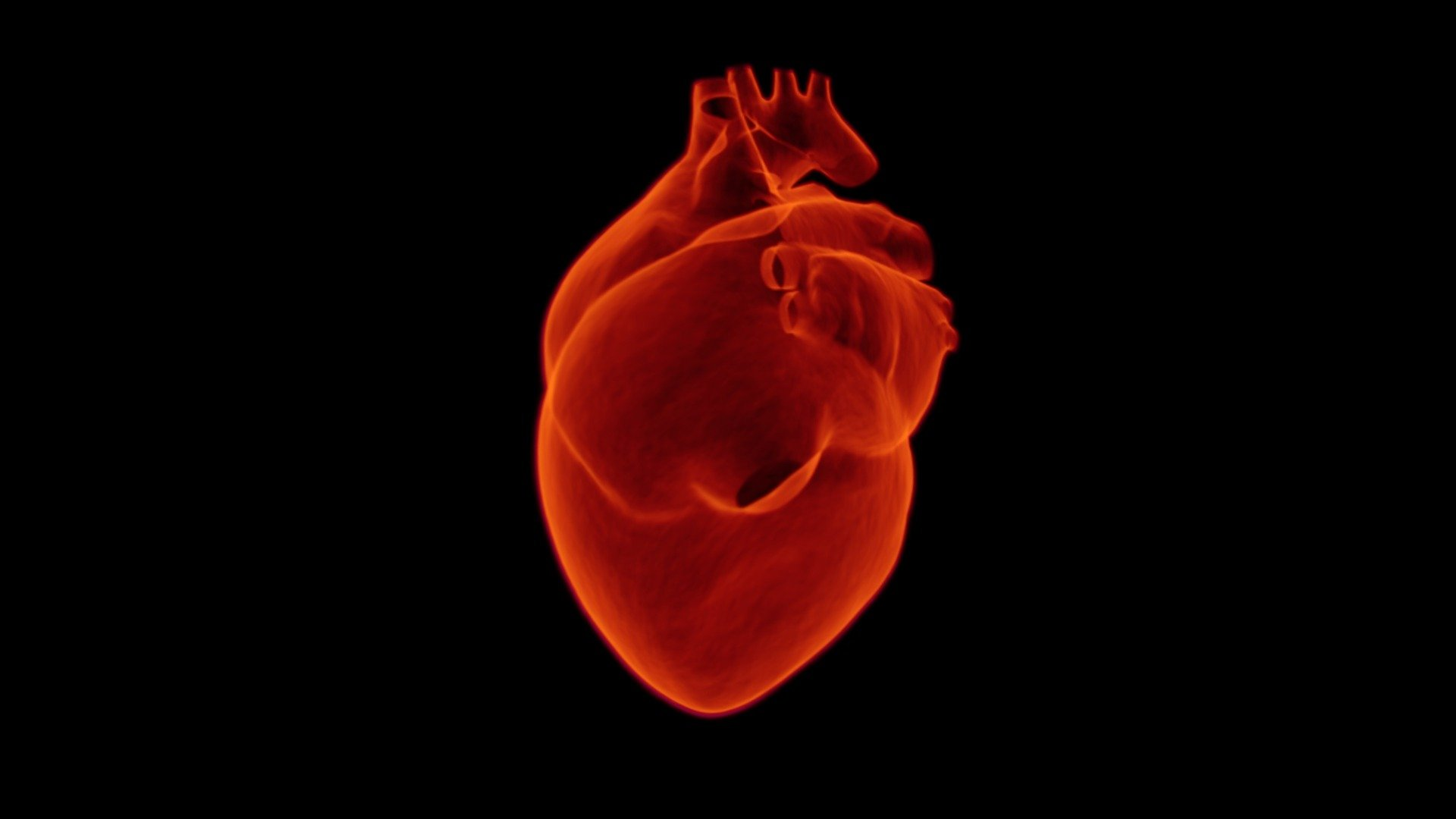 164928711 heart 17675521920