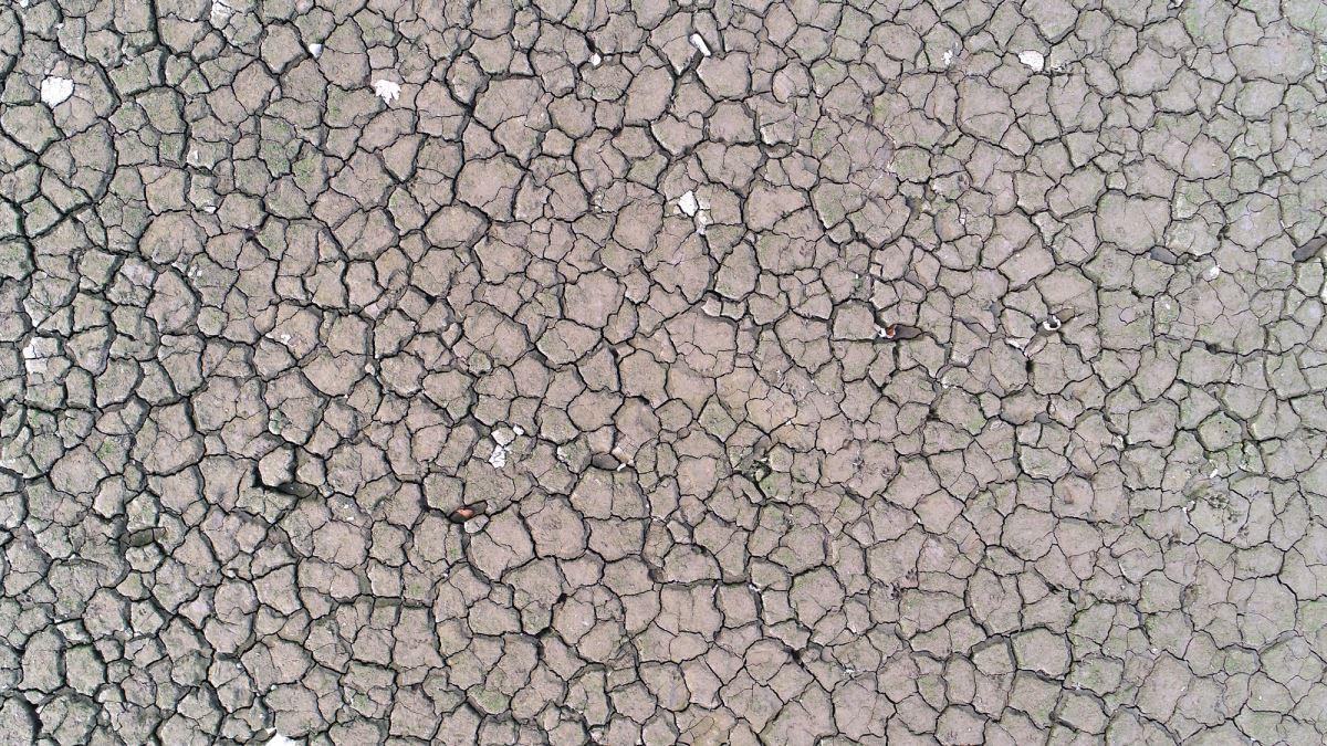 <p>Uludağ ve Katır Dağları'ndan akan sularla beslenen, Gürsu, Kestel, Yıldırım ve Osmangazi ilçesindeki tarım arazilerini sulamak için kullanılan barajda yaşanan kuraklık, bölge çitçilerini endişelendirdi.<br></p>