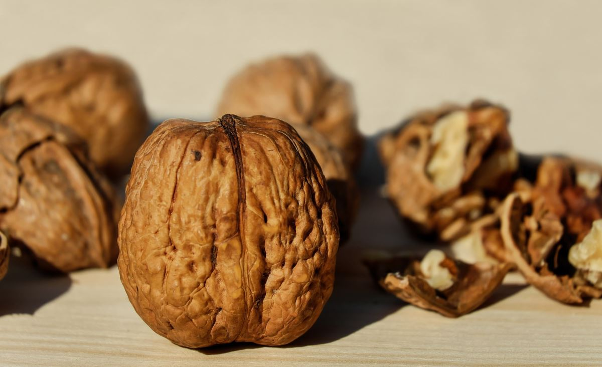 144750780 walnut 17390211920
