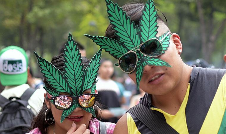 BM, esrarı en tehlikeli uyuşturucular listesinden çıkardı