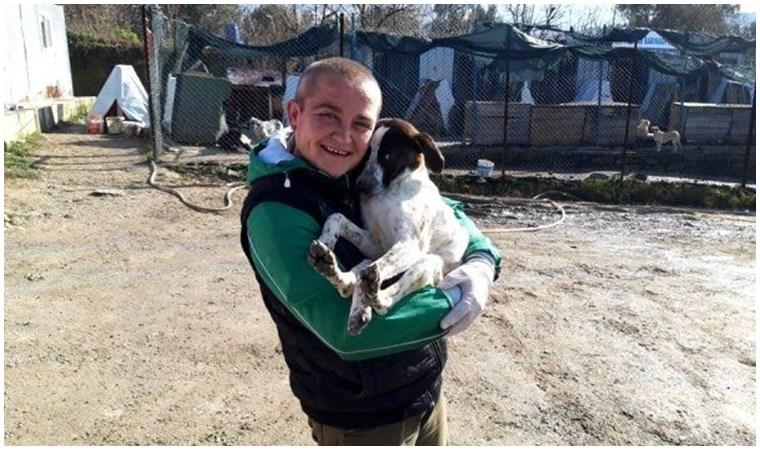 Lapseki'de sokak hayvanları aşılandı