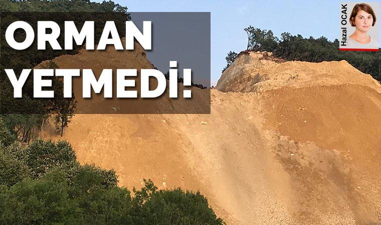 Türk Akımı projesine orman yetmedi