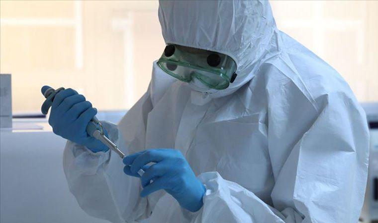 Koronavirüsün yayılmasını sağlayan protein çözüldü