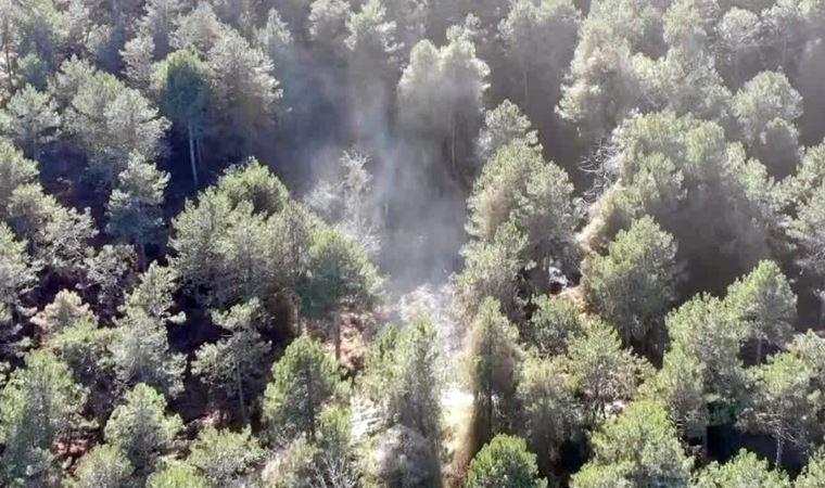 Aydos Ormanı'ndaki yangın böyle görüntülendi