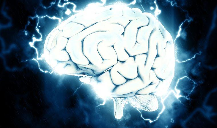 Beynimizin gerçek rengi nedir?