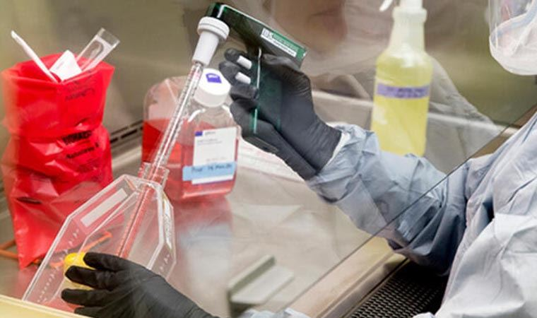 Koronavirüs tahlil bilgilerini gizleyen iki laboratuvara soruşturma