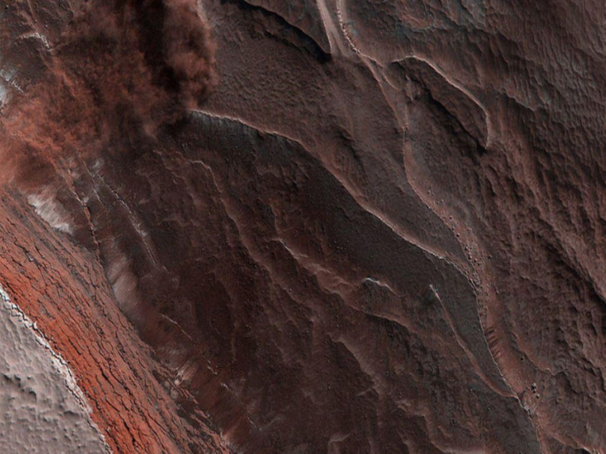 Araştırma: Mars'ta böceklerle medeniyet kurulabilir 14