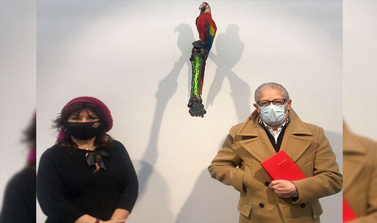 """Fabre'nin """"Belçika Kongosu'na Saygı"""" sergisi, ülkesinin sömürgeciliğine tepkisini yansıtıyor: Böcek kanadıyla manifesto!"""