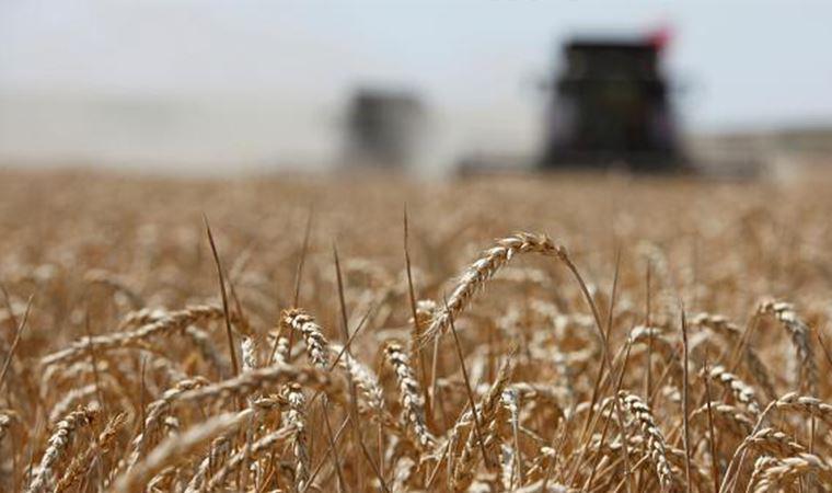 16 milyon metrekare tarım arazisi yabancıda