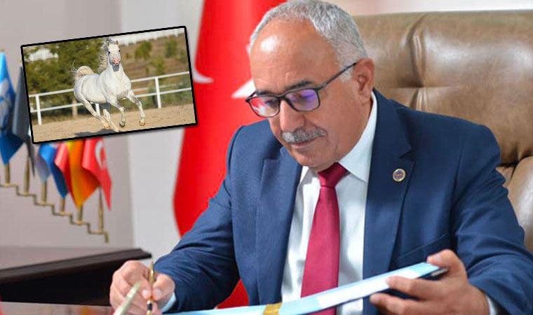 MHP'de 'kayıp at' istifası