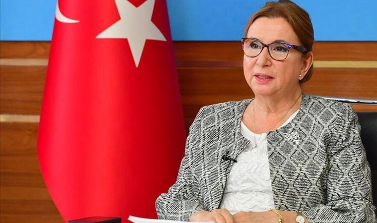 Davutoğlu'ndan Ticaret Bakanı Ruhsar Pekcan'a: Sayın Bakan, sizin hiç utanmanız yok mu? Derhal istifa edin!