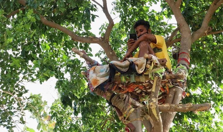 Testi pozitif çıkan genç, ağaçta izolasyon yatağı yaptı