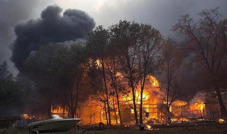 California'da geçen yılki yangından bu yana dumanı tüten bir Sekoya ağacı keşfedildi