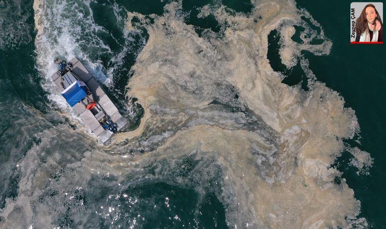 Deniz salyası: Uzmanlar müsilaj eylem planı hakkında ne diyor?