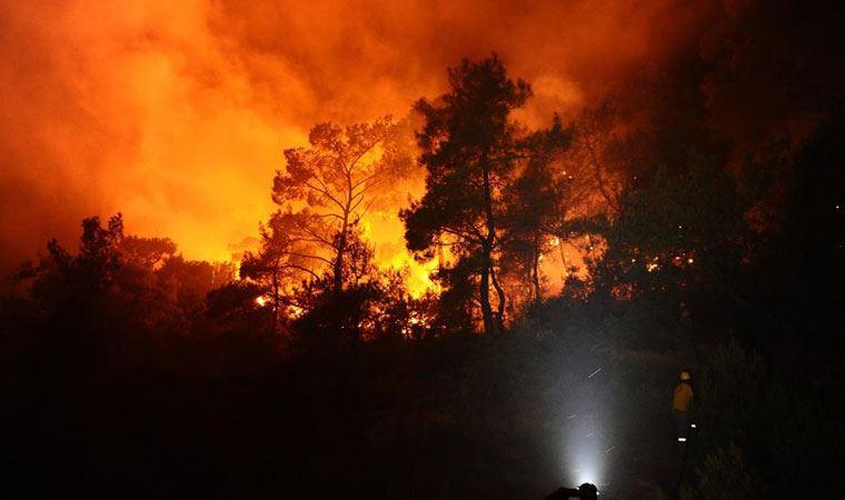 Milas ilçesindeki orman yangınına ilişkin soruşturma başlatıldı
