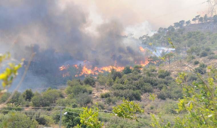 Mersin'de orman yangınları: İki çoban kayıp, bir kişi gözaltında