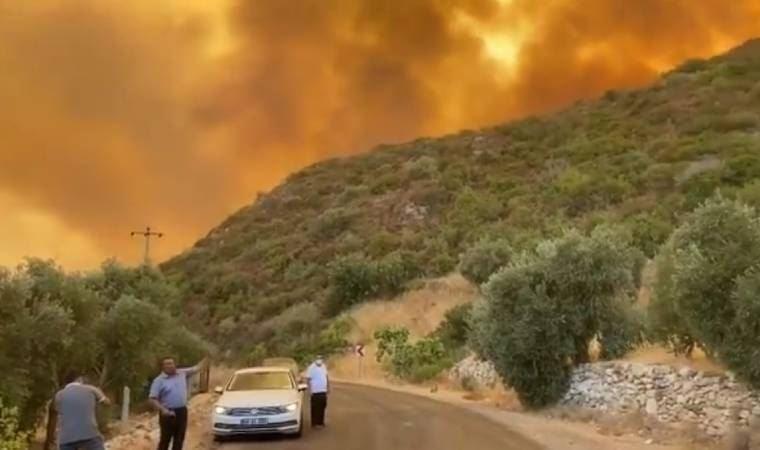 Milas'ta yangın korkutan seviyede
