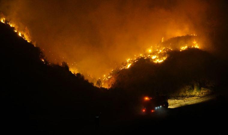 Ege'de yangınlar büyüyor! Alevlerle mücadelede başarı için çok önemli çağrı