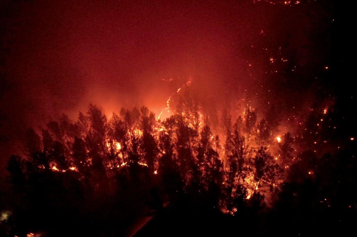 <p>Yetkililer üst düzey tedbirler alındığını, santralin çevresinde hendekler kazıldığını açıkladı. Patlama riski olmadığı belirtildi.</p><p>Milas ve Bodrum ilçelerindeki orman yangınlarına havadan ve karadan müdahale devam ediyor.</p><p>Milas'ın Beyciler Mahallesi'nde 31 Temmuz'da başlayan orman yangını Ören Türkevleri, Çökertme, Bozolan, Fesleğen, Gökbel ile Bodrum'un Aşağı Mazı, Yukarı Mazı mahallelerinde etkili oluyor.</p>