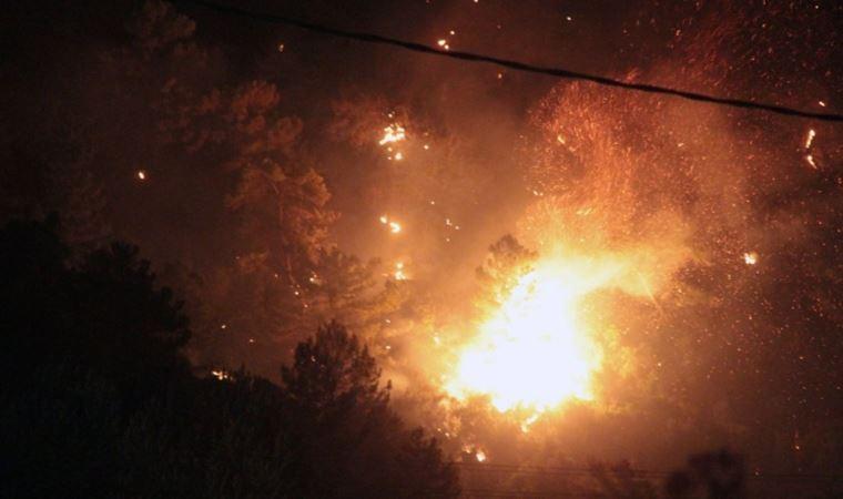 Bir dekar orman yandı