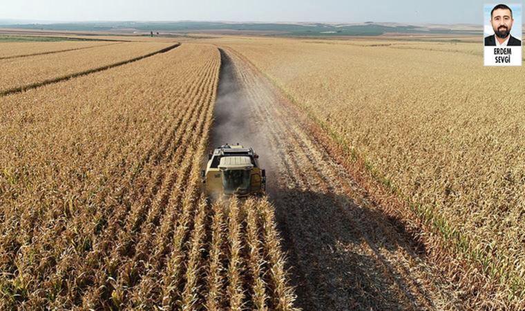 Ergene'nin verimli tarım arazisinde plastik üretilecek