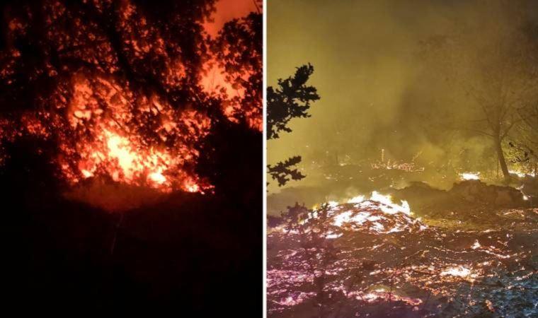 Bodrum Yalıkavak'taki orman yangını söndürüldü